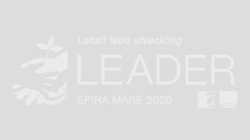 Styrelsemöte LAG 10 mars 2020
